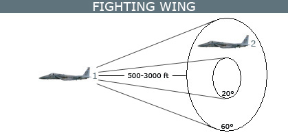 Fighting wing